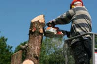 Hammersmith Fulham felling services