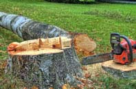 free Hammersmith Fulham tree felling quotes